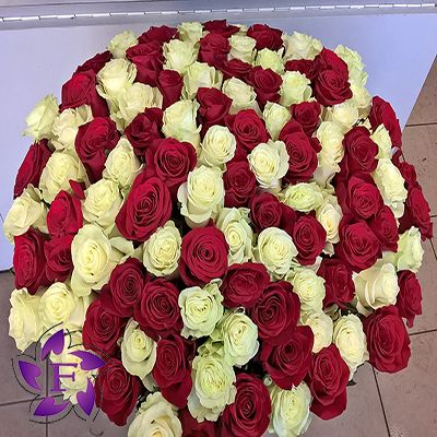 101 roses with delivery