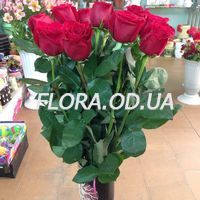 15 import roses - Photo 2