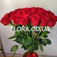 25 імпортних троянд - Фото 1