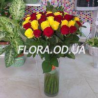 35 import roses - Photo 1
