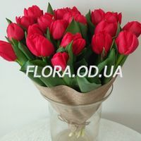 Bouquet of 19 red tulips - Photo 2