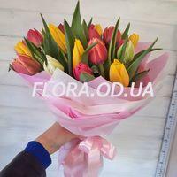 Букет з 29 різнокольорових тюльпанів - Фото 1