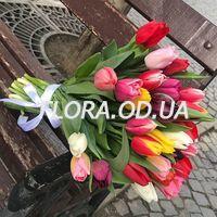 Букет из 29 разноцветных тюльпанов - Фото 1
