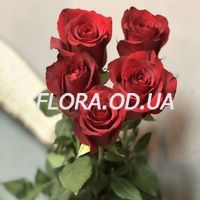 5 красных роз и Raffaello - Фото 1