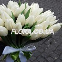 Букет из 35 белых тюльпанов - Фото 4