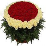 301 роза - цветы и букеты на flora.od.ua