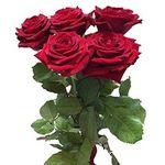 5 роз - цветы и букеты на flora.od.ua