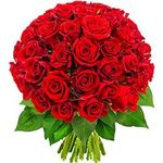 51 roses - flowers and bouquets on flora.od.ua