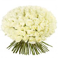 101 white roses 60 cm - flowers and bouquets on flora.od.ua