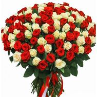 101 roses red and white - flowers and bouquets on flora.od.ua