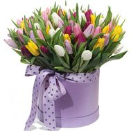 101 tulips in a box - flowers and bouquets on flora.od.ua