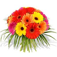 21 gerberas in bouquet - flowers and bouquets on flora.od.ua