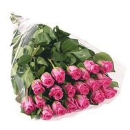 21 imported pink roses - flowers and bouquets on flora.od.ua