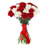 25 carnations - flowers and bouquets on flora.od.ua