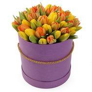 51 яркий тюльпан в коробке - цветы и букеты на flora.od.ua