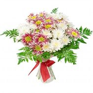 7 different chrysanthemums - flowers and bouquets on flora.od.ua
