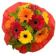Bouquet of gerberas - flowers and bouquets on flora.od.ua