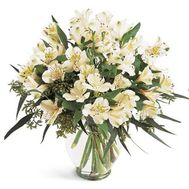 Bouquet of 11 white alstromeries - flowers and bouquets on flora.od.ua