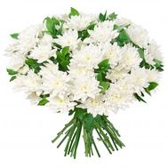 Букет из 15 хризантем - цветы и букеты на flora.od.ua