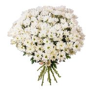 """Bouquet of 21 chamomile chrysanthemums"" in the online flower shop flora.od.ua"