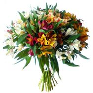 Bouquet of 25 alstromeries - flowers and bouquets on flora.od.ua