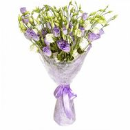 Bouquet of 25 eustoms - flowers and bouquets on flora.od.ua