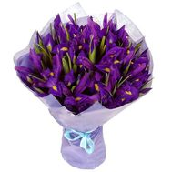 Bouquet of 25 irises - flowers and bouquets on flora.od.ua