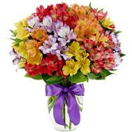 Bouquet of 35 alstromeries - flowers and bouquets on flora.od.ua