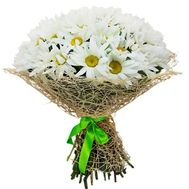 Bouquet of 35 chamomiles - flowers and bouquets on flora.od.ua