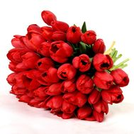 """Bouquet of 45 red tulips"" in the online flower shop flora.od.ua"