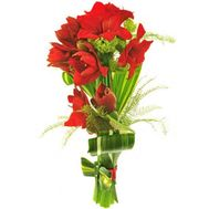 Bouquet of 5 Amaryllis - flowers and bouquets on flora.od.ua
