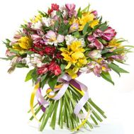 Bouquet of 51 alstroemerias - flowers and bouquets on flora.od.ua
