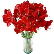 """Bouquet of 7 Amaryllis"" in the online flower shop flora.od.ua"