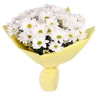 """Bouquet of 7 chamomile flowers"" in the online flower shop flora.od.ua"