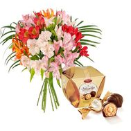 Bouquet of 9 alstromeries and Masterpiece - flowers and bouquets on flora.od.ua