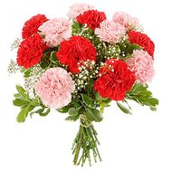 Букет из гвоздик - цветы и букеты на flora.od.ua