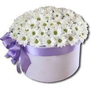 """A bouquet of camomiles in a box"" in the online flower shop flora.od.ua"