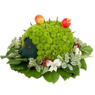 """Hedgehog of flowers"" in the online flower shop flora.od.ua"