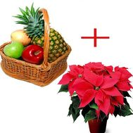 Fruits for the New Year - flowers and bouquets on flora.od.ua