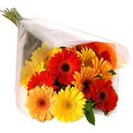 Gerberas in bouquet - flowers and bouquets on flora.od.ua