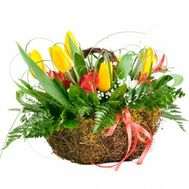 Basket with tulips and alstromeries - flowers and bouquets on flora.od.ua