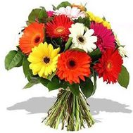 Beautiful bouquet of gerberas - flowers and bouquets on flora.od.ua
