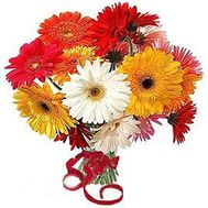 Buy bouquet of gerberas - flowers and bouquets on flora.od.ua