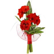 """A small bouquet of amaryllis"" in the online flower shop flora.od.ua"