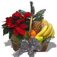 Новорічний кошик з фруктами - цветы и букеты на flora.od.ua