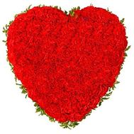 Heart of 101 red carnations - flowers and bouquets on flora.od.ua