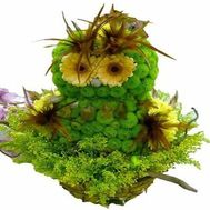 """Owl of flowers"" in the online flower shop flora.od.ua"