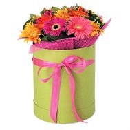 15 gerberas in a box - flowers and bouquets on flora.od.ua
