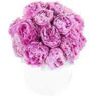 19 peonies in a box - flowers and bouquets on flora.od.ua