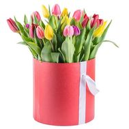 21 multi-colored tulip in a box - flowers and bouquets on flora.od.ua